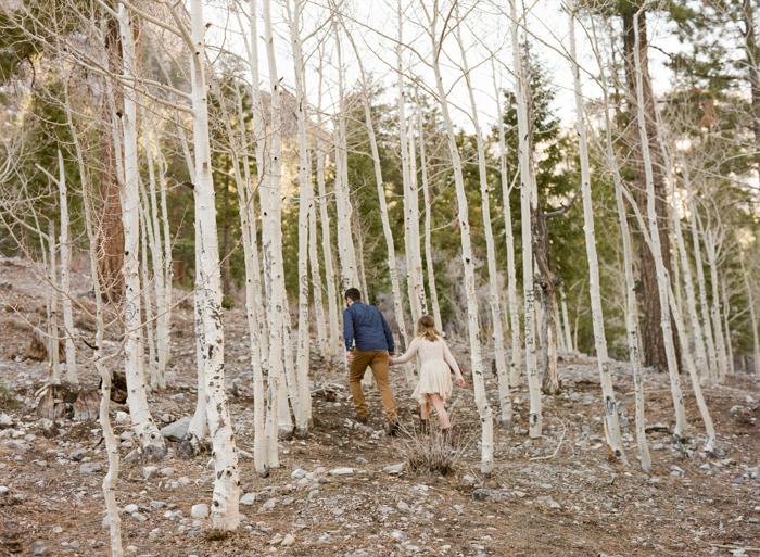 woodsy mount charleston engagement session 033
