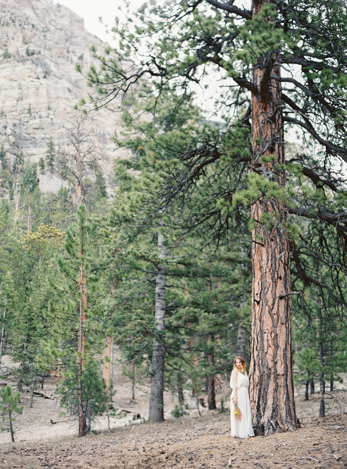 outdoors las vegas forest engagement photo 005