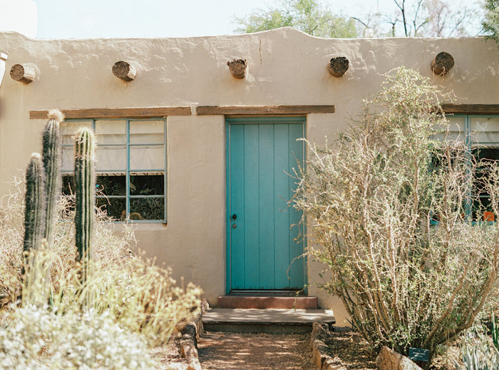 desert botanical garden phoenix arizona 8