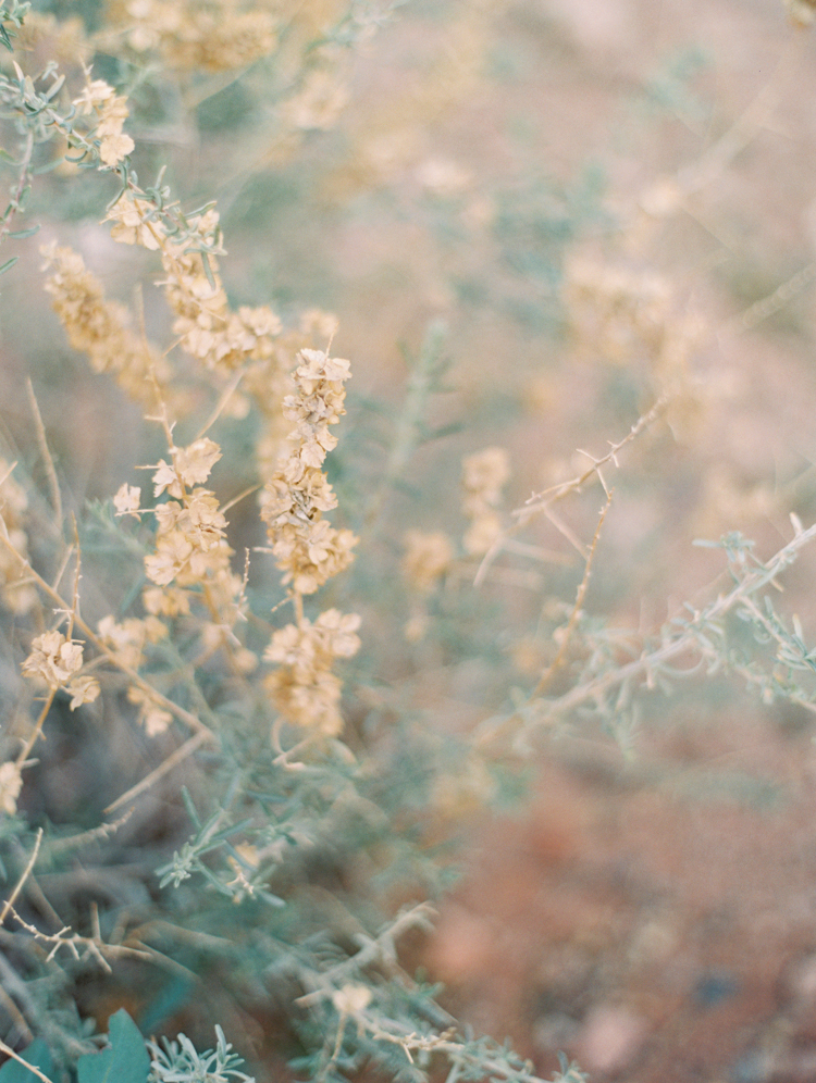 small wedding at red rock canyon national park | desert elopement | gaby j photography | las vegas elopement