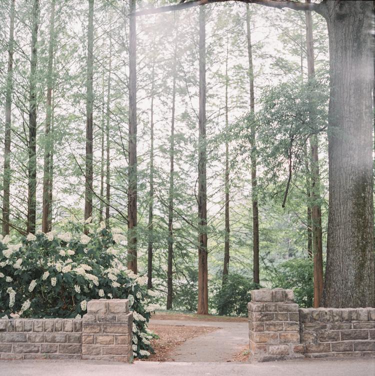 piedmont park elopement georgia photographer