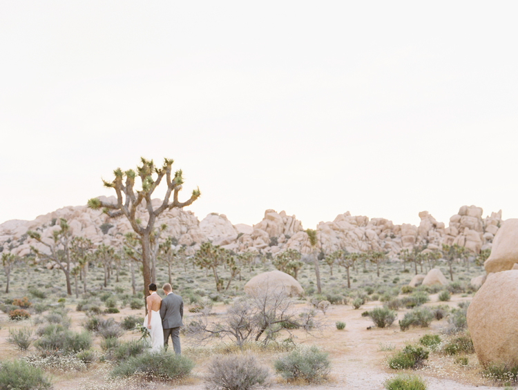 intimate wedding in joshua tree national park