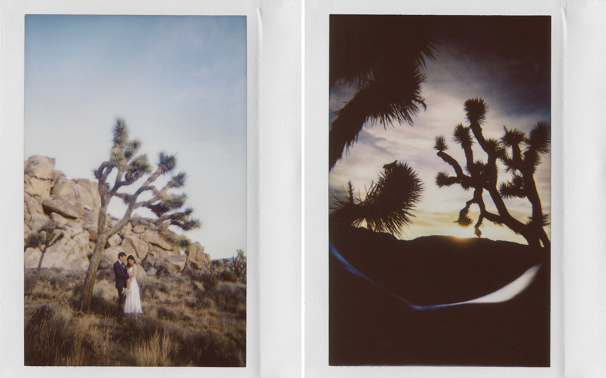 joshua tree wedding polaroids