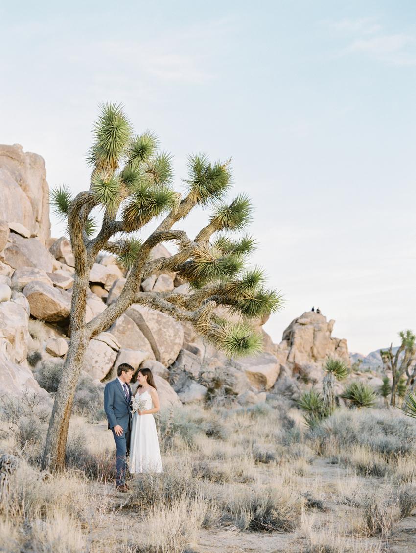 bride and groom standing under joshua tree