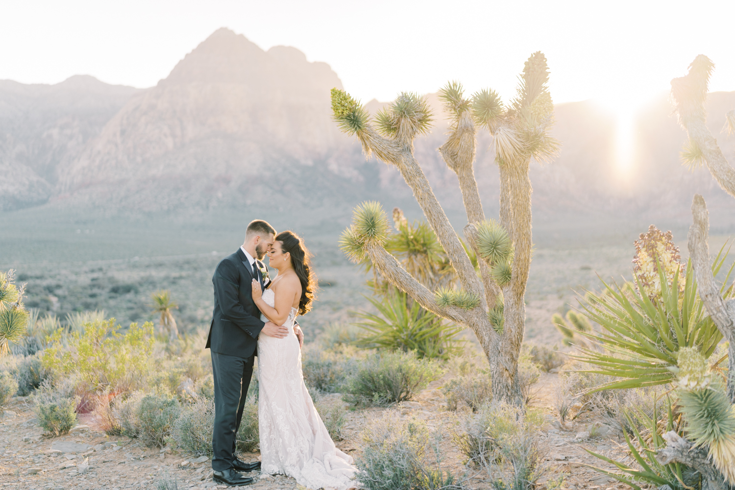 las vegas desert wedding locations