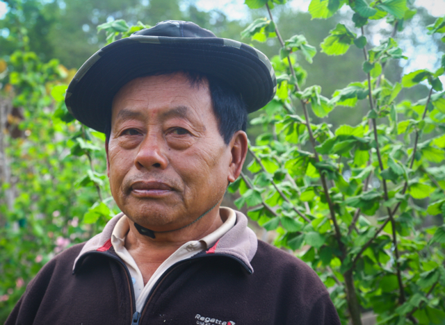 A determined innovator, Ap Naku believes in continually experimenting with new techniques and crops. After a career as an army officer, he has brought new cash crops to his farm, such as oranges, mushrooms, and, yes, hazelnuts.  More...