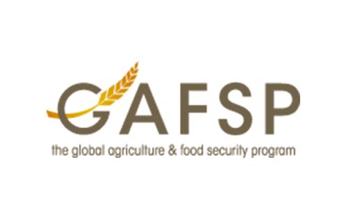 GAFSP 2.png