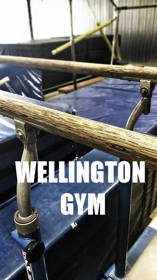 CLICK IMAGE TO BOOK INTO A CLASS AT THE WELLINGTON GYM