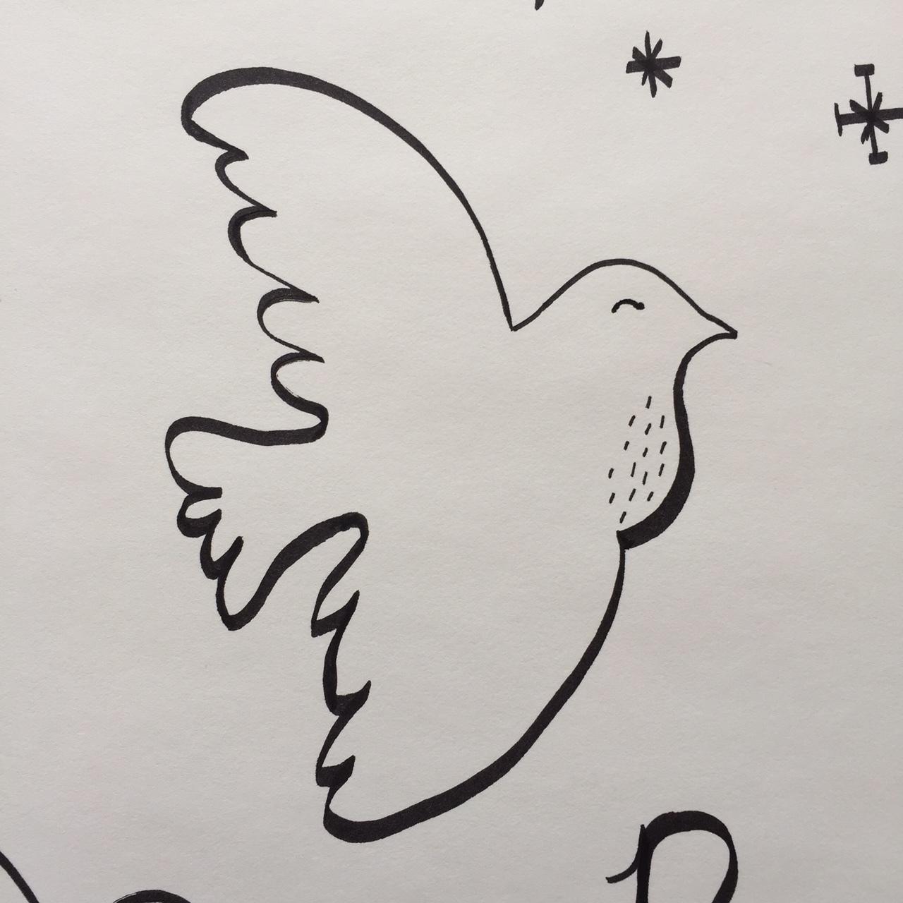 elizabethkorb-dove-sketch-2016