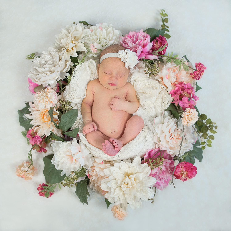 newborn flower wreath portland seattle