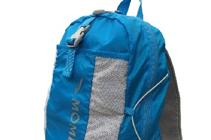 Momentum Backpack.jpg