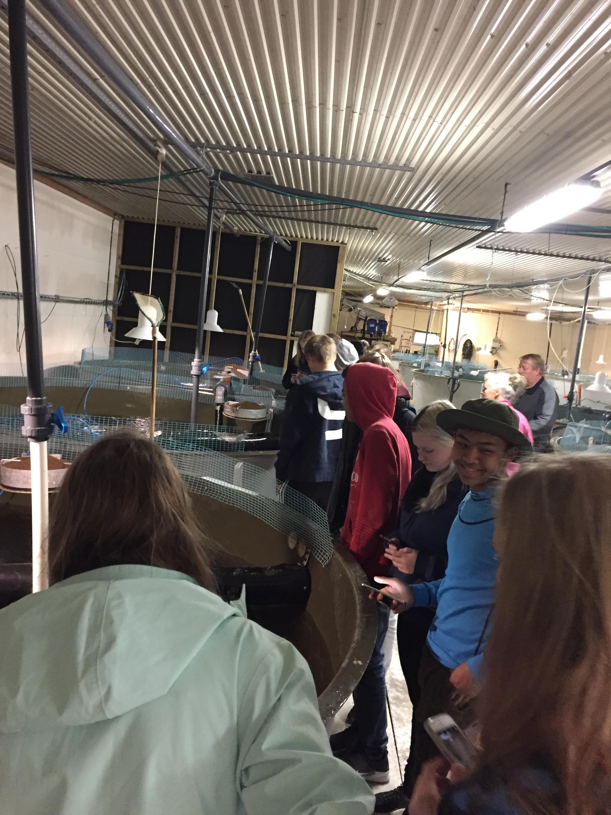 Her er vi på besøk til Olden settefiskanlegg, for å se hvor laksens liv starte :-)