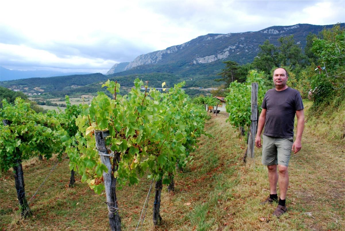 Drago's Winery