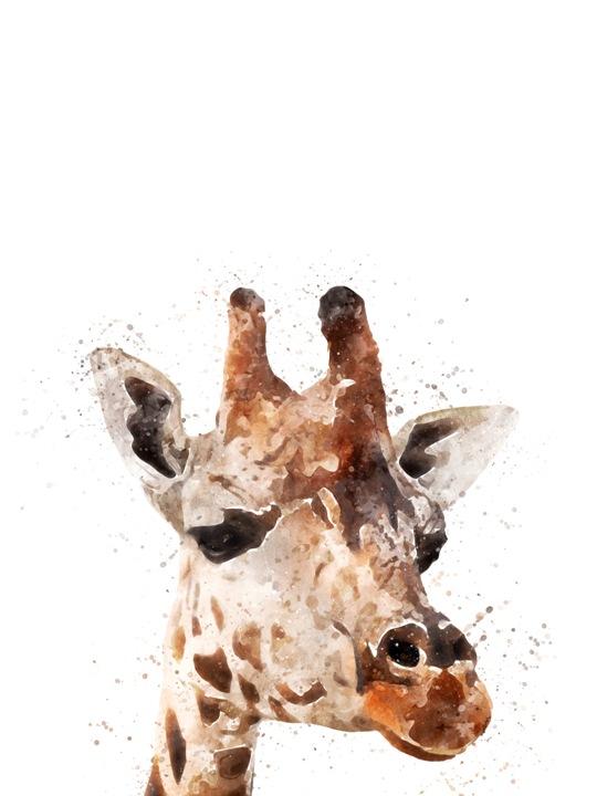 giraffe small.jpg
