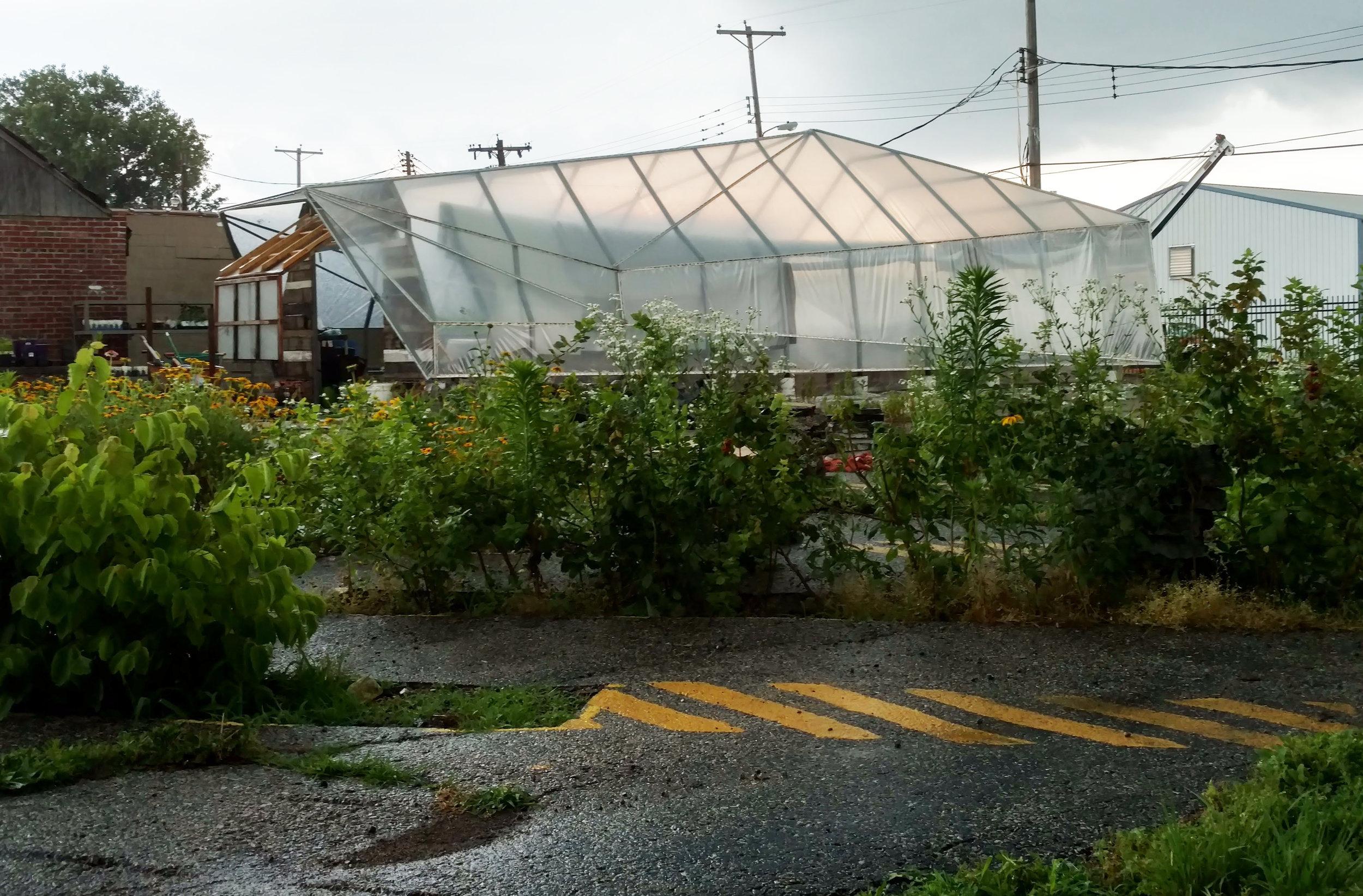greenhouse.jpg