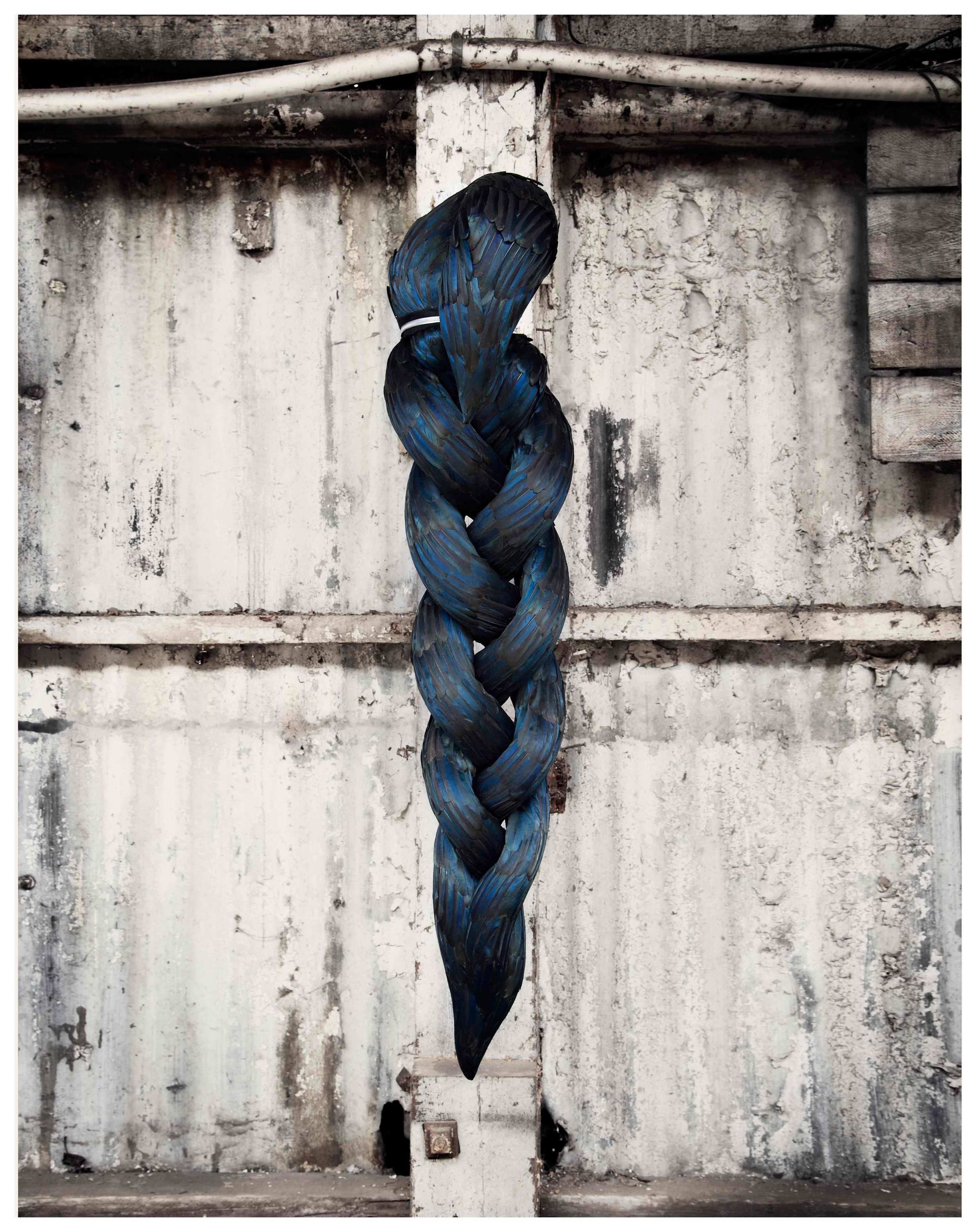 Splice, 2012, Kate MccGwire