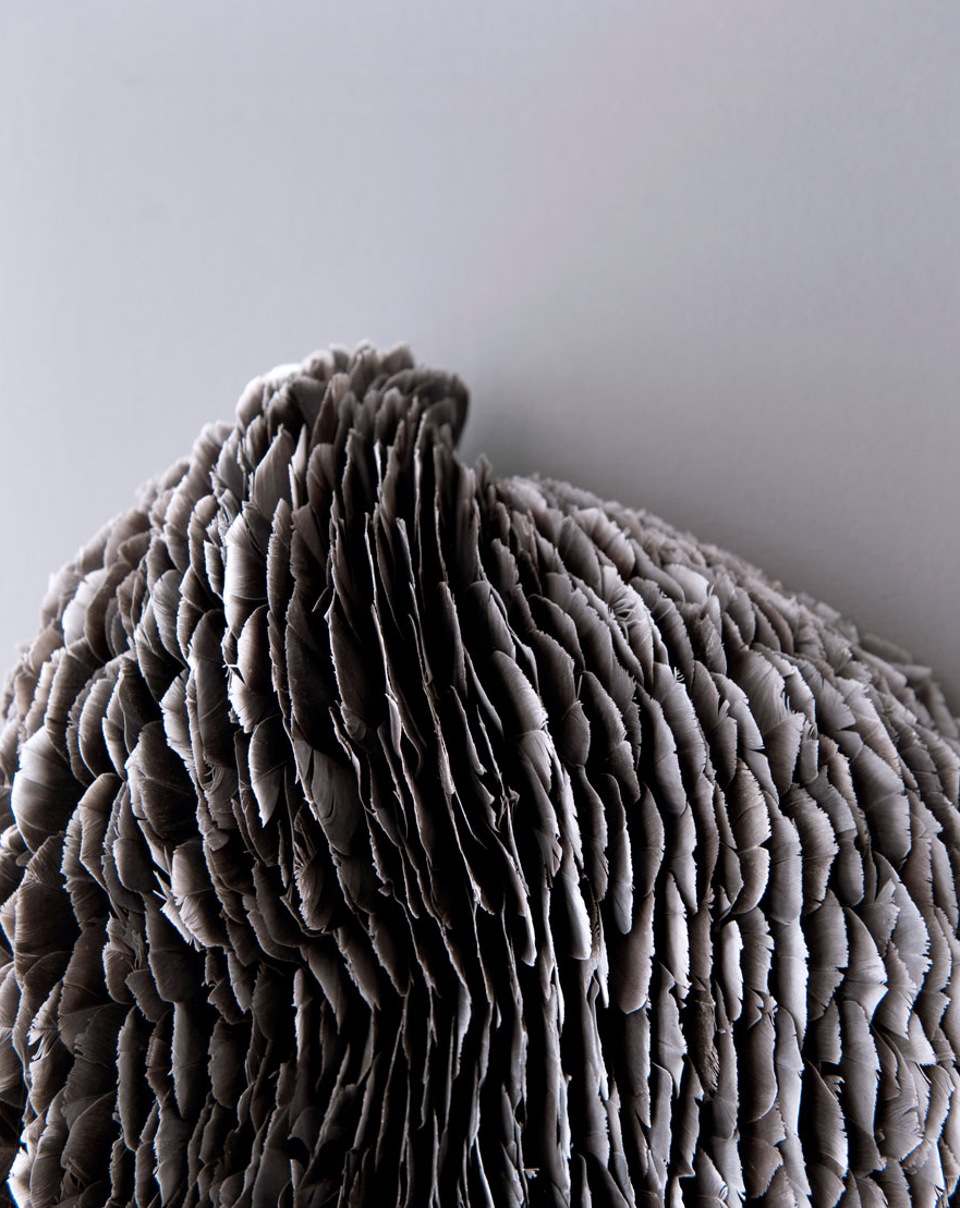 Host, 2010, Kate MccGwire