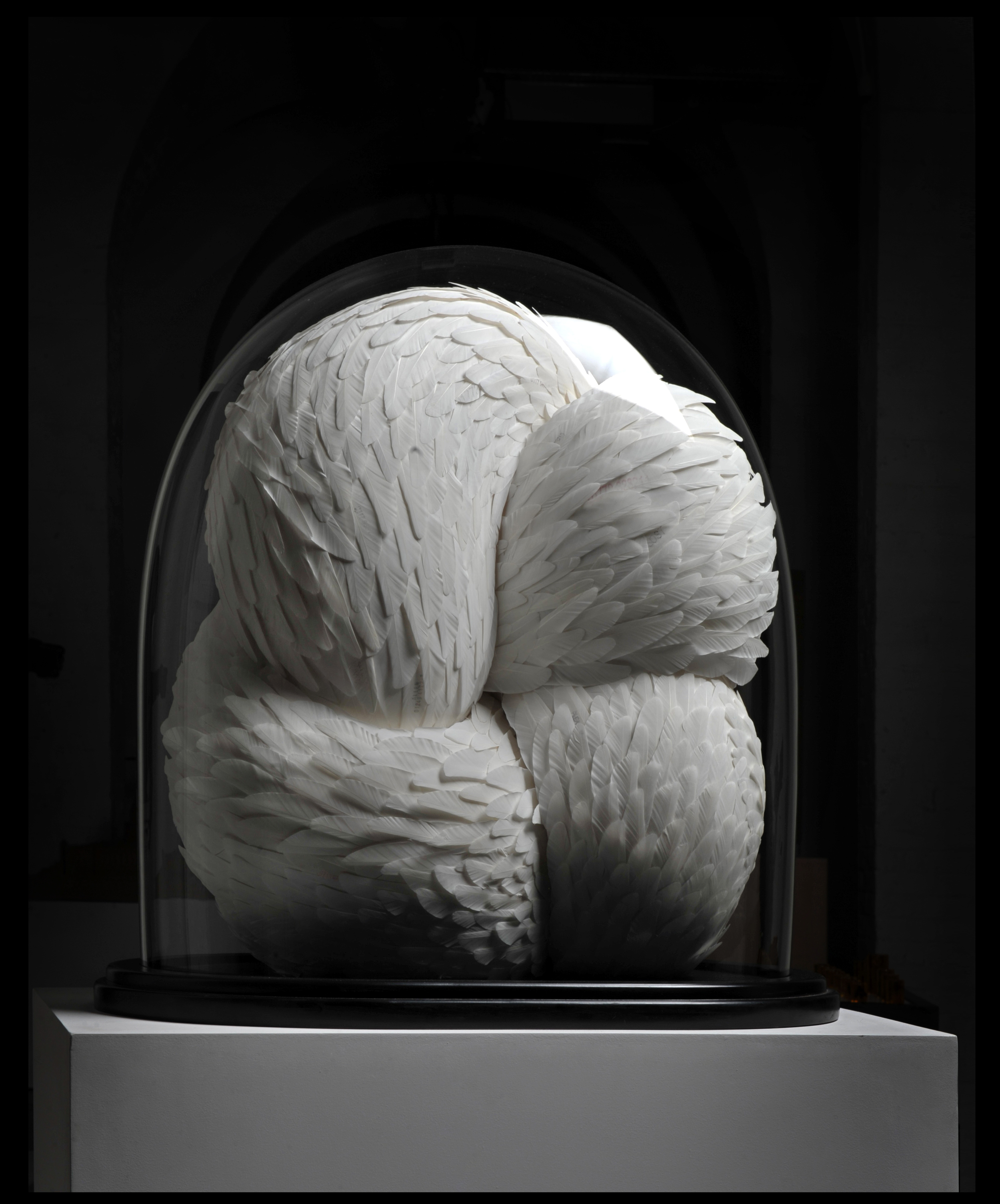Stifle, 2009, Kate MccGwire