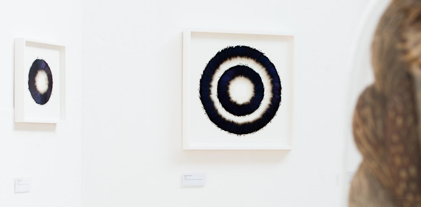 Swell & Sepal Speculum (Exhibition View),Kate MccGwire, RWA,Bristol -Photo: Jon Craig