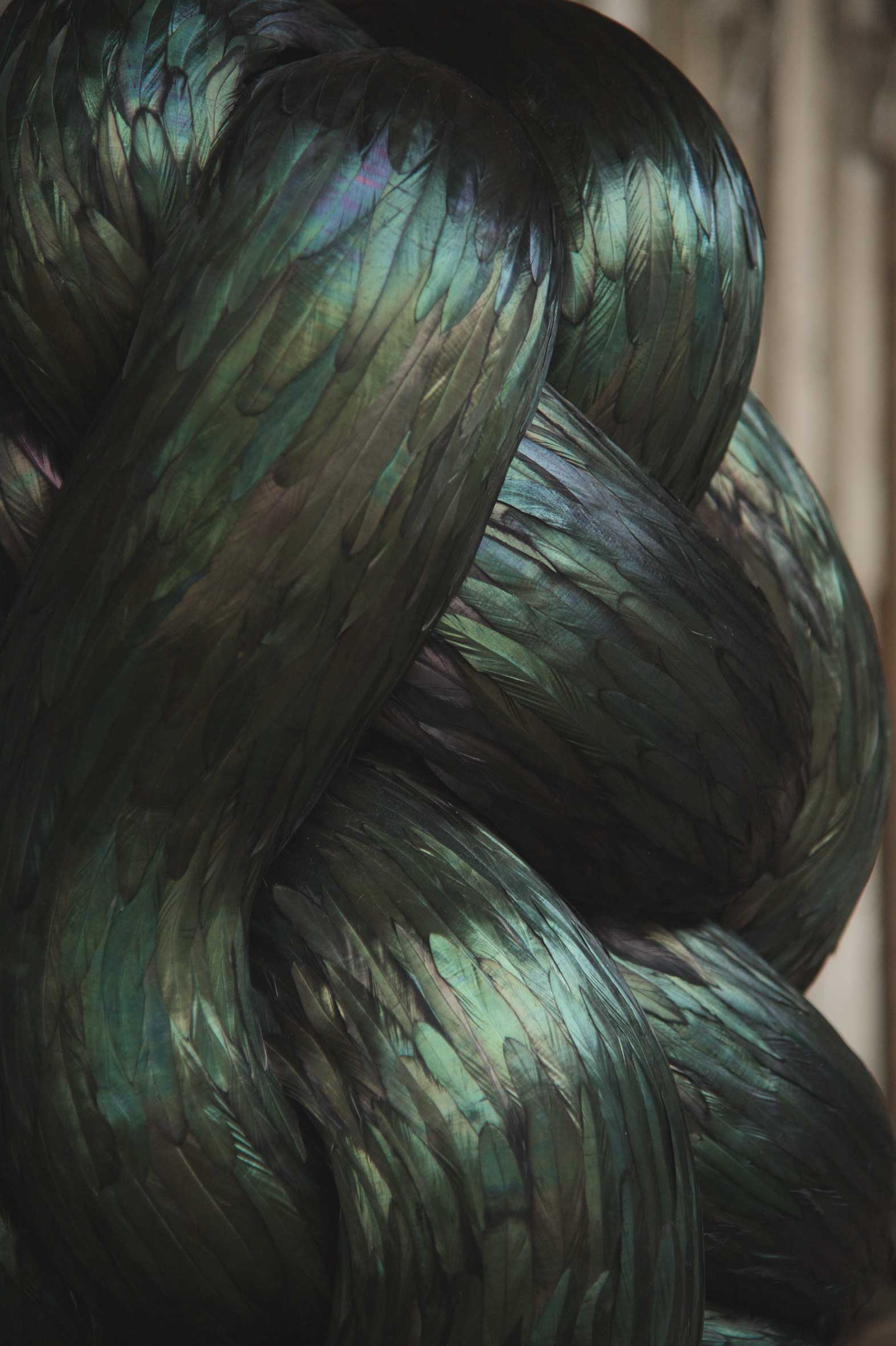 Convolous (detail), 2015, Kate MccGwire - Photo JP Bland