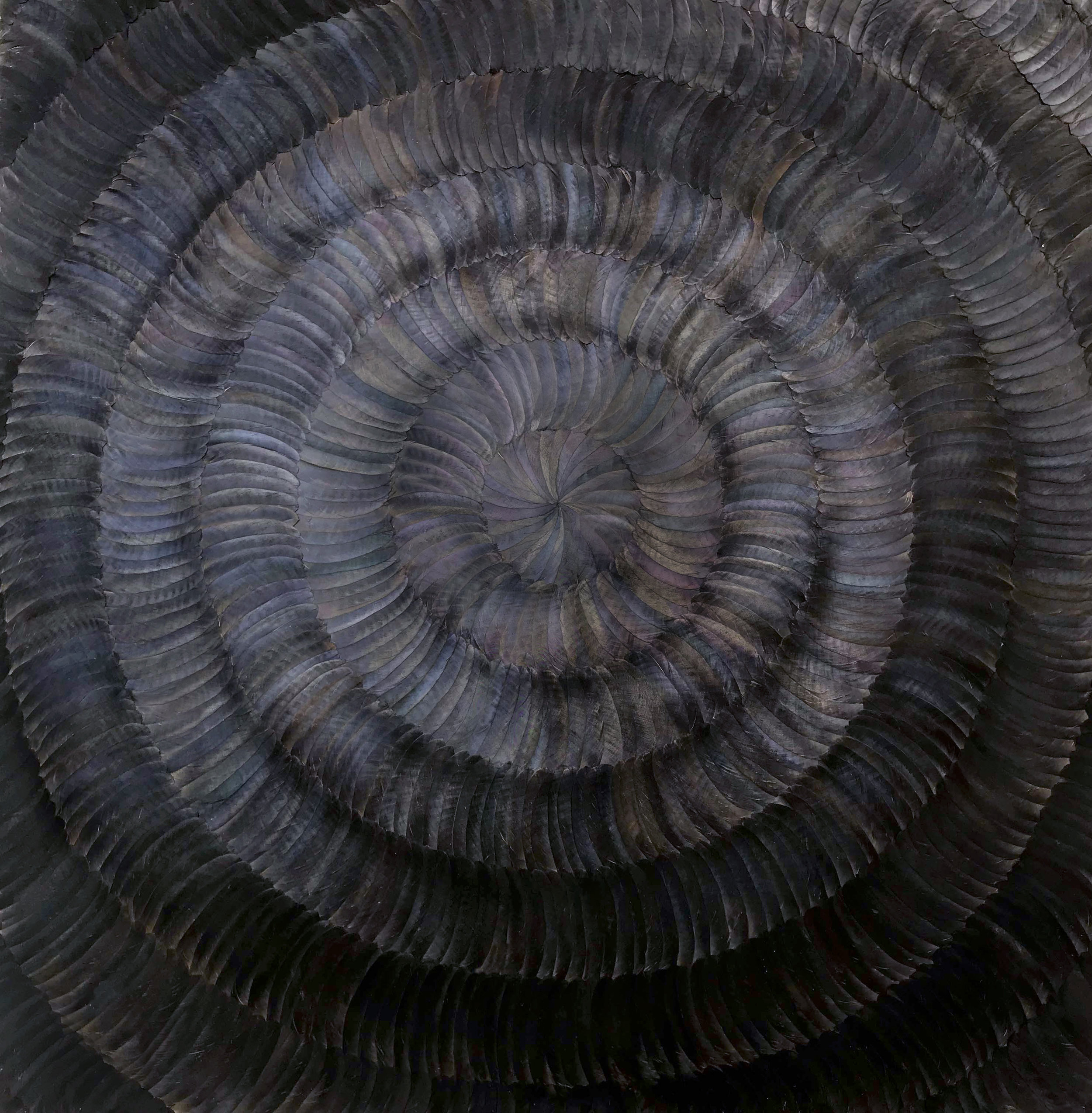TREMOR  (2018) Kate MccGwire