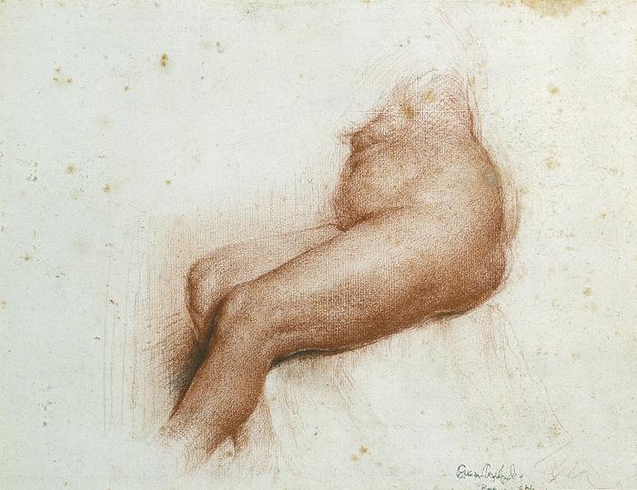 Nude Study - Florence