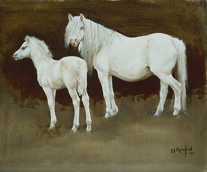 Grey Pony and Foal