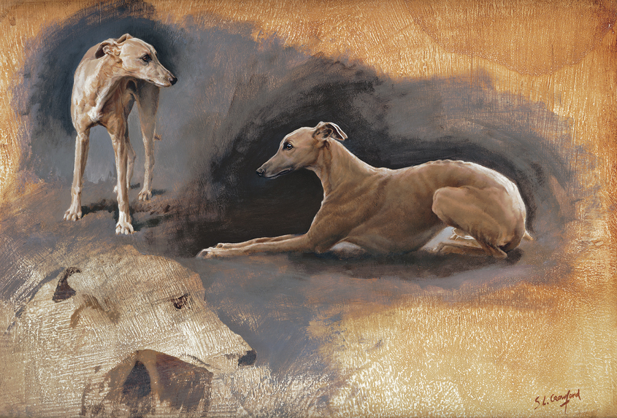 Study of a Whippet