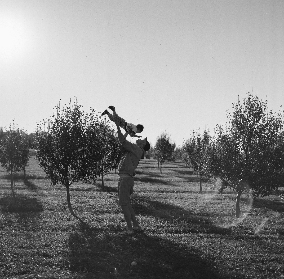 apple orchard-12.jpg