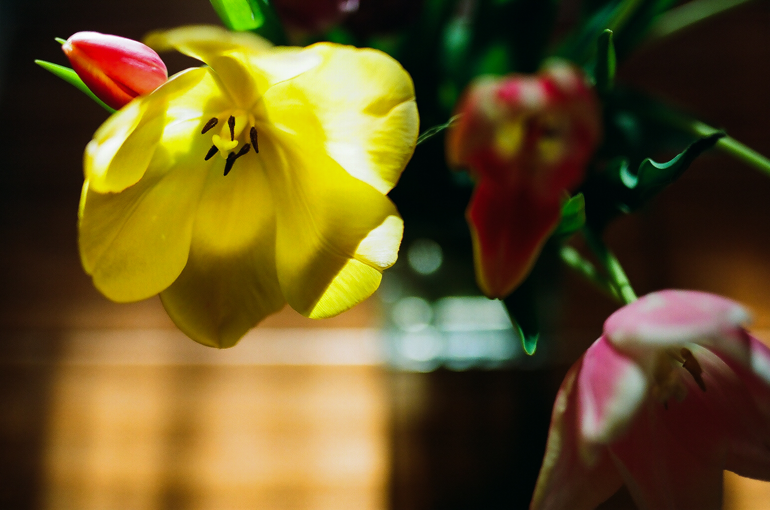easter and hello spring (21 of 36).JPG