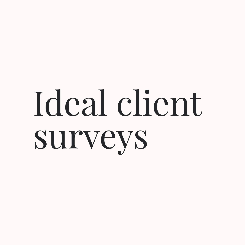Ideal client surveys.jpg
