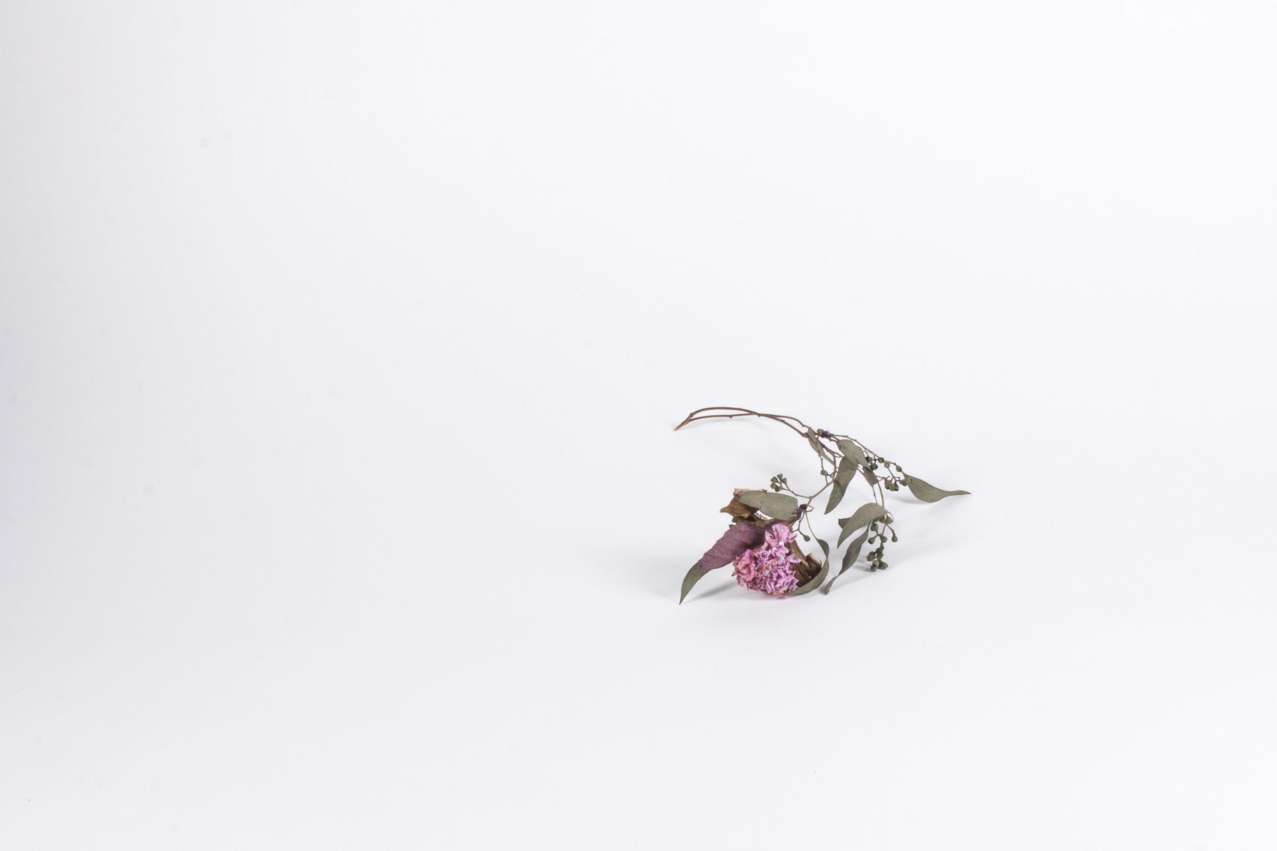 Flower_Sculptures_50+(1)_1.JPG