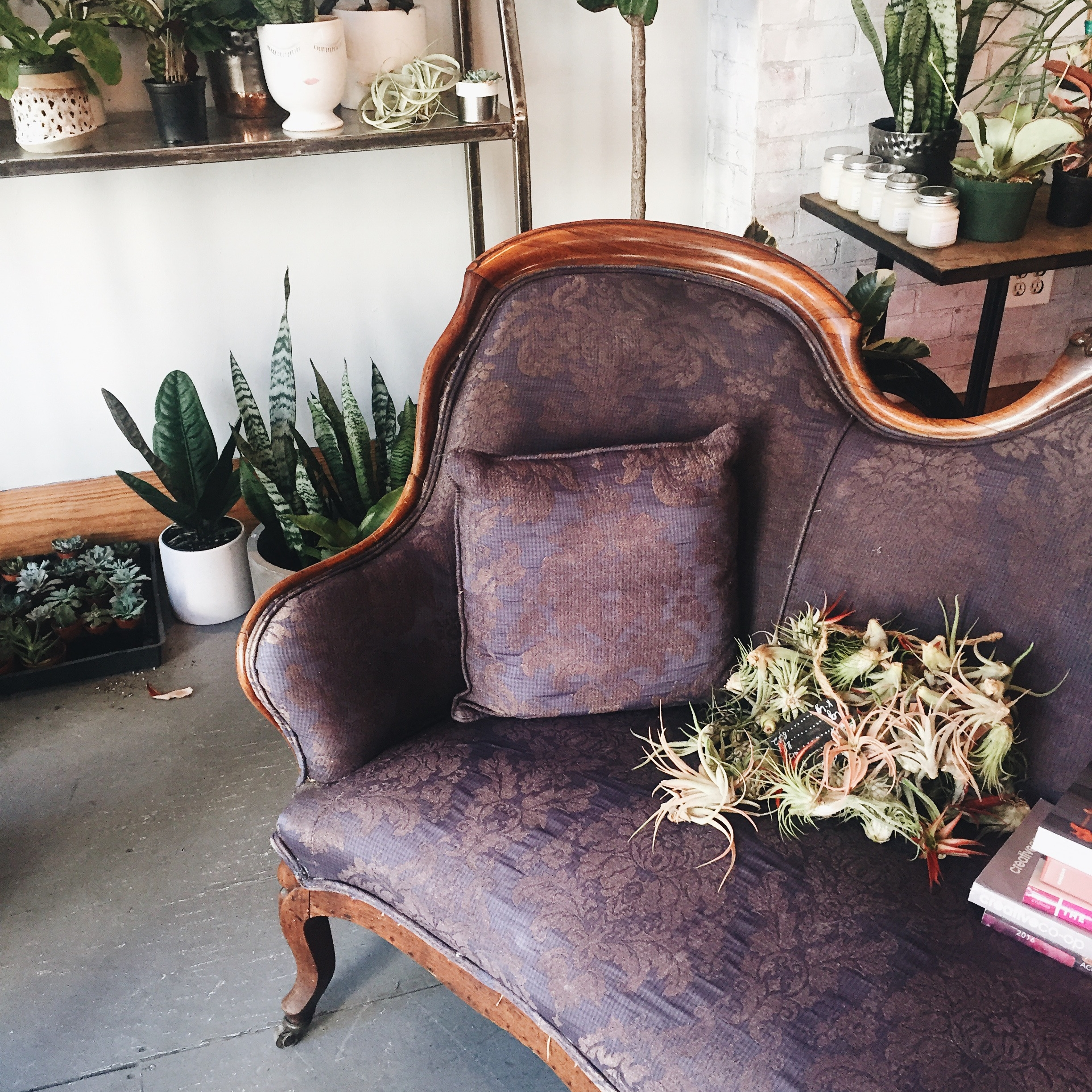 Flowers in the City: OTR's Gia and the Blooms    An Over-the-Rhine floral shop talks selling botanicals in a concrete jungle and connecting with their diverse range of customers.