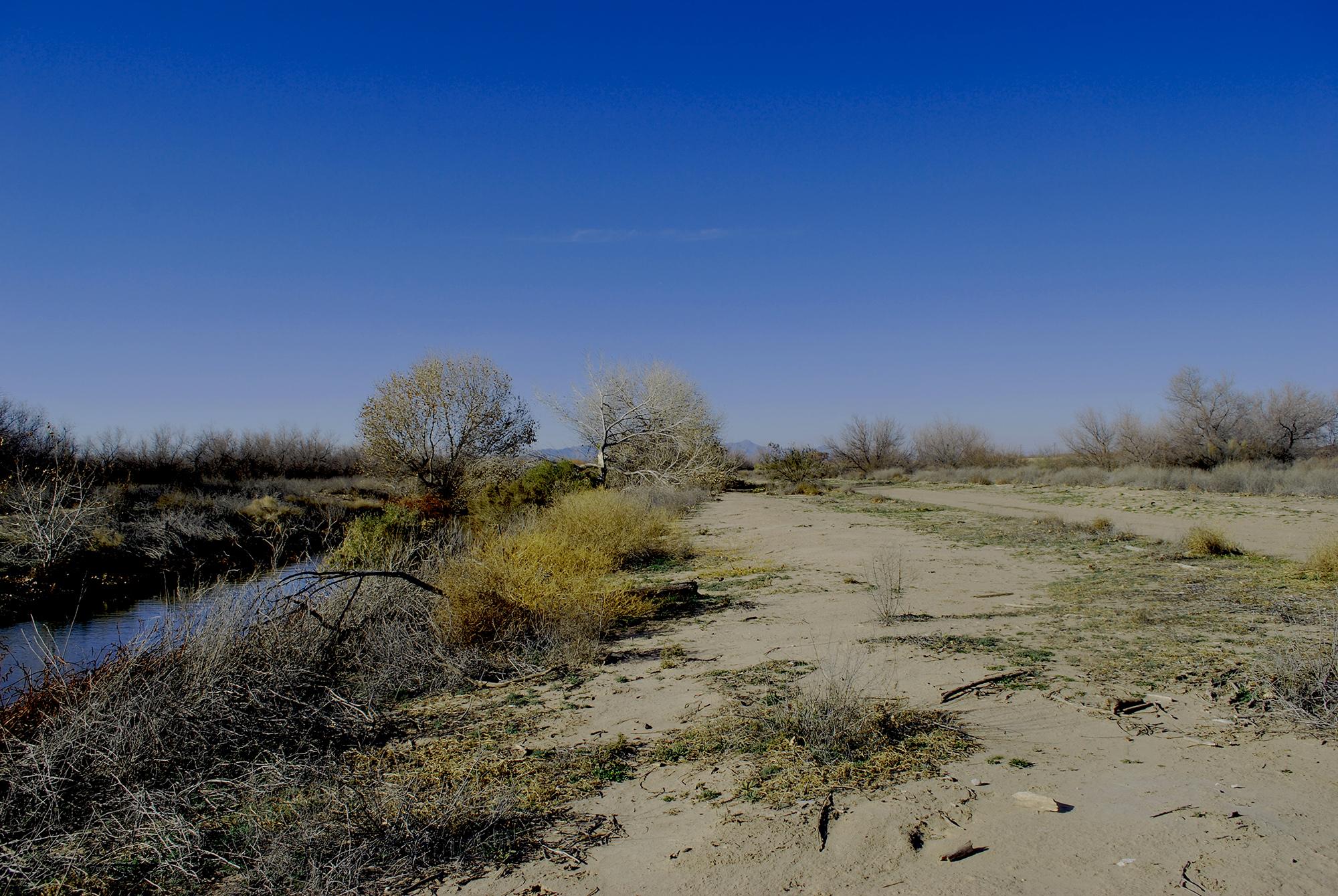 Rio Bosque Wetlands2.JPG