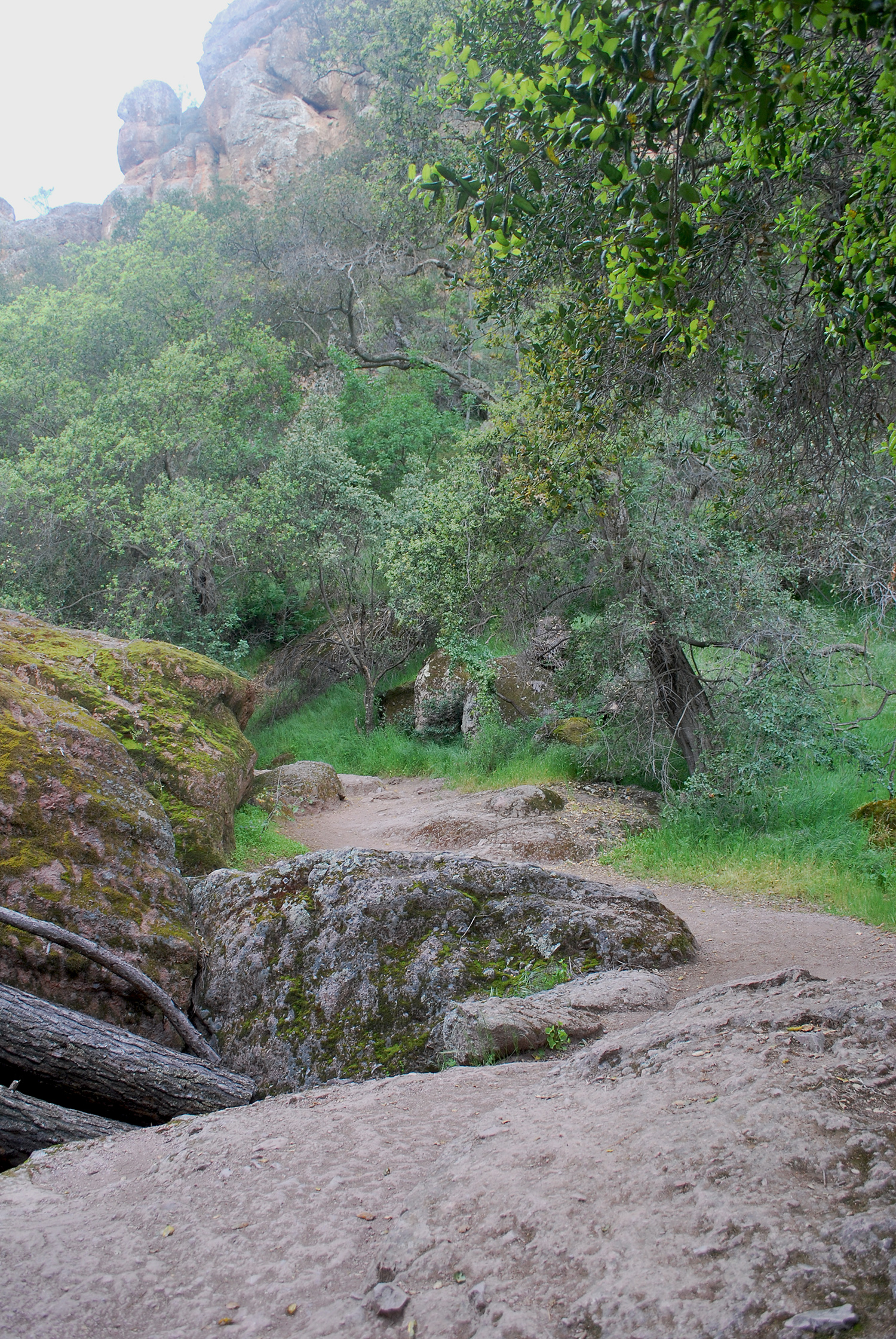 Pinnacles Nationa Park trails.jpg