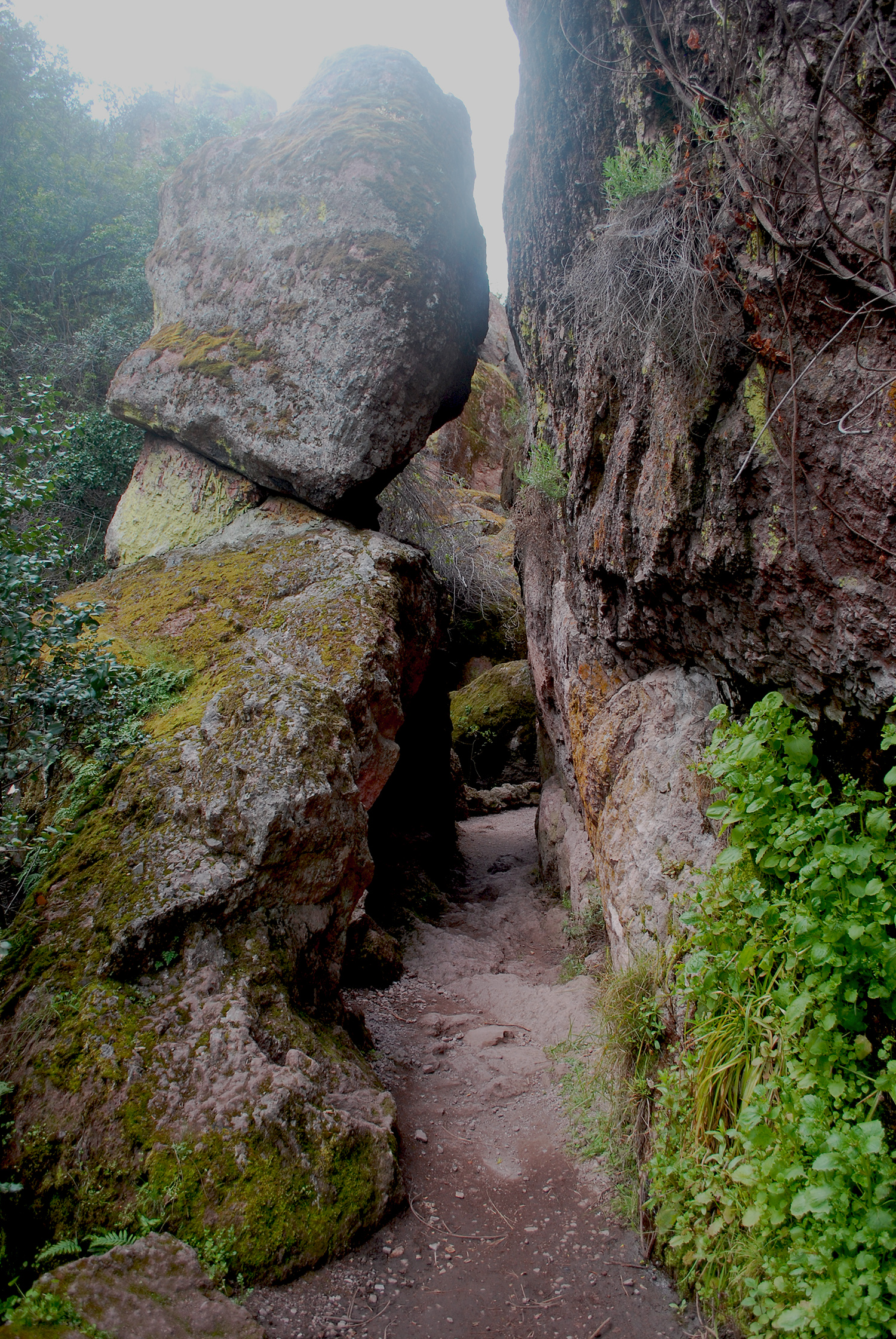 Pinnacles Nationa Park rock formations.jpg