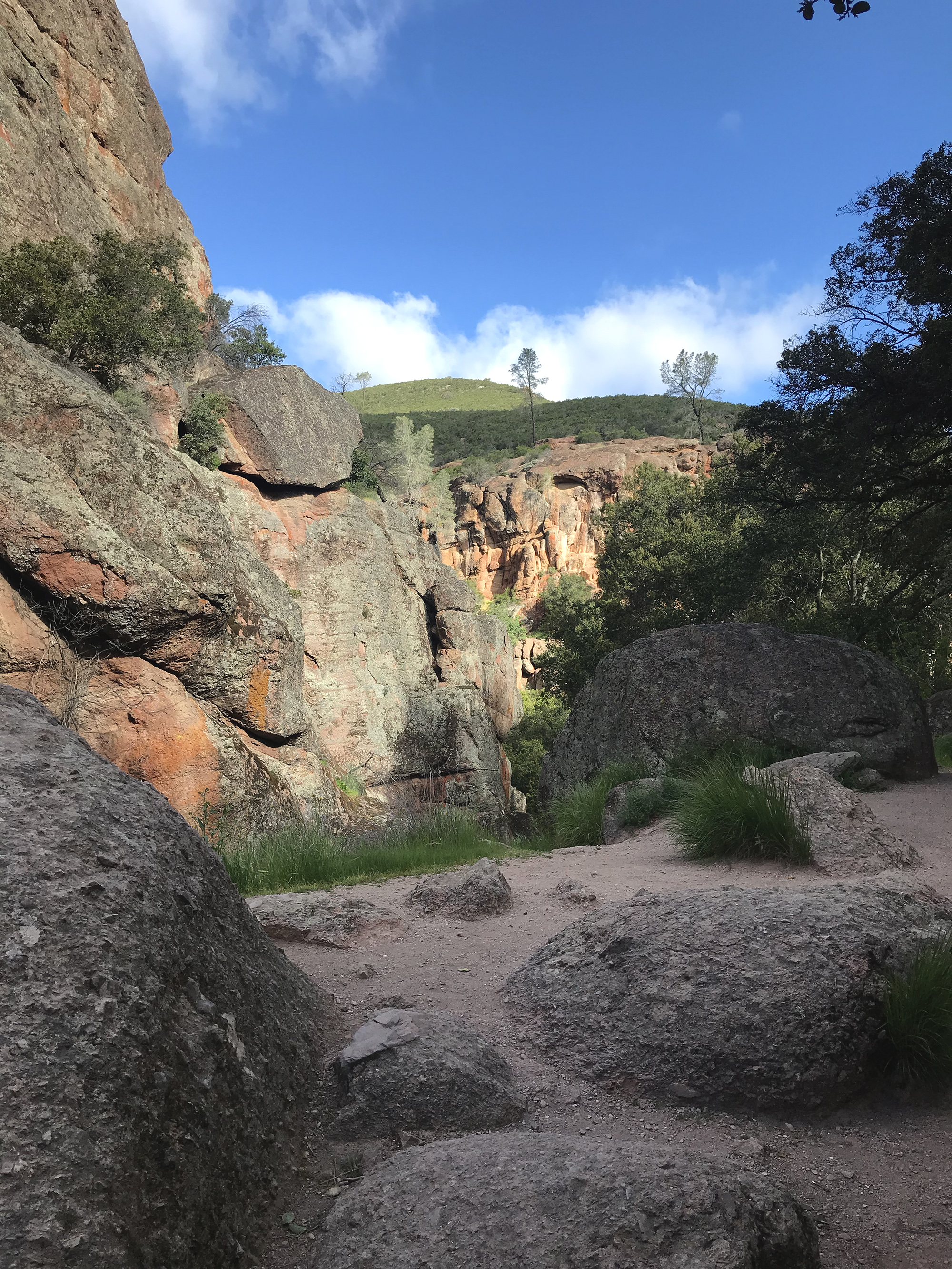 Pinnacles Nationa Park.jpg
