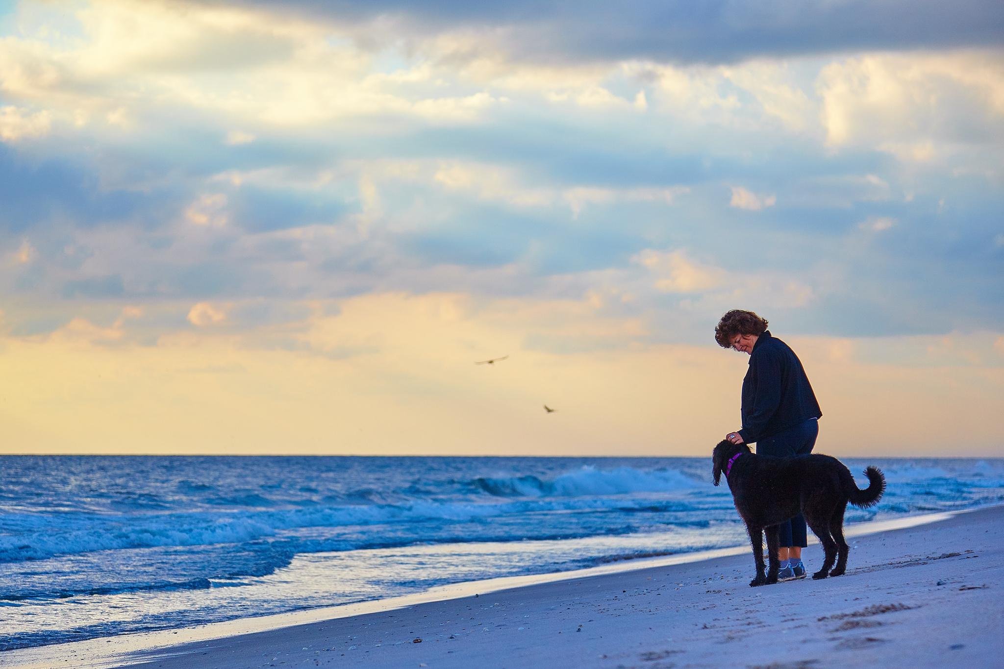 boprey-pet-photography-portrait-nyc_4.jpg