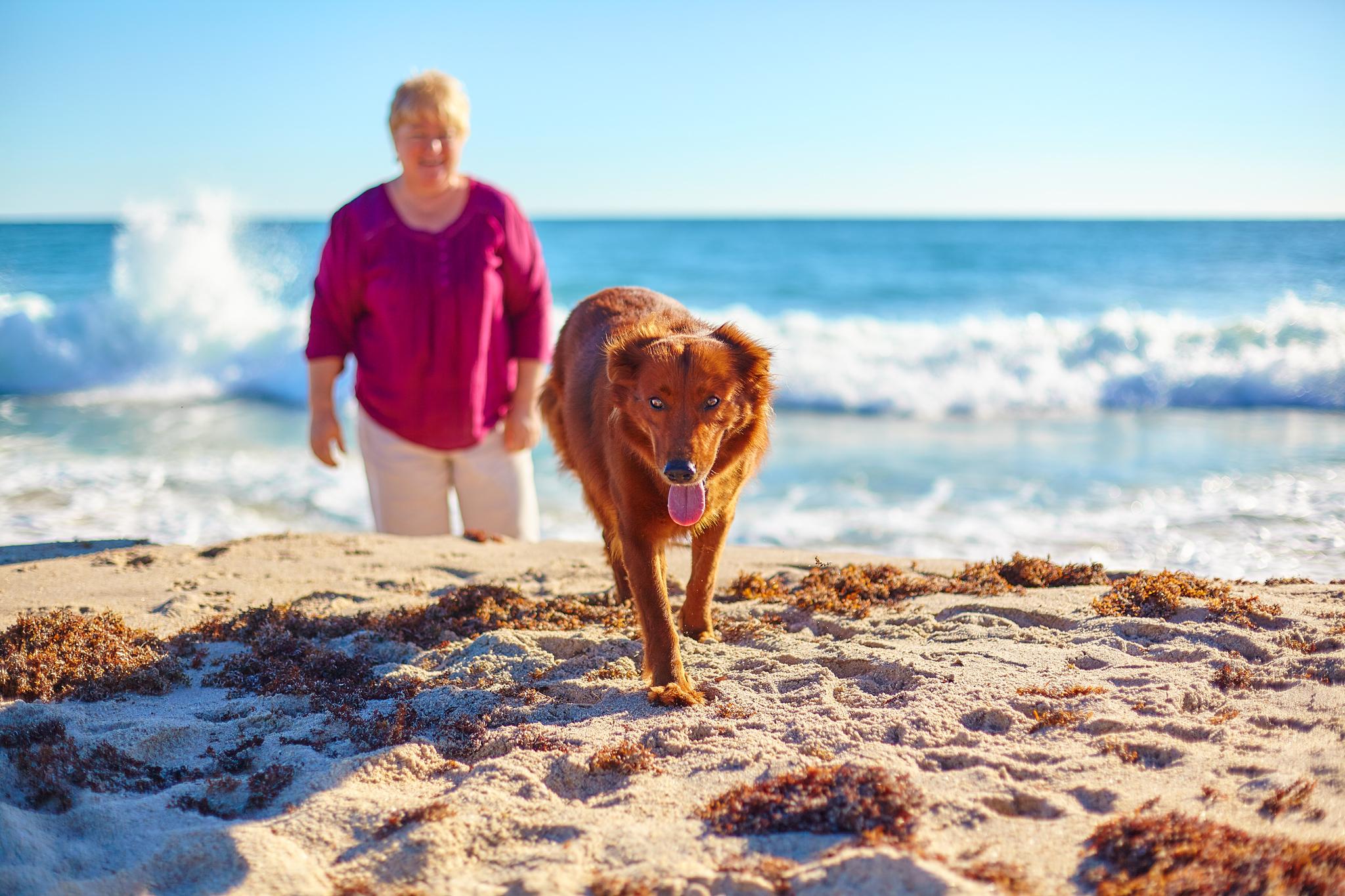 boprey-pet-photography-portrait-nyc_9.jpg