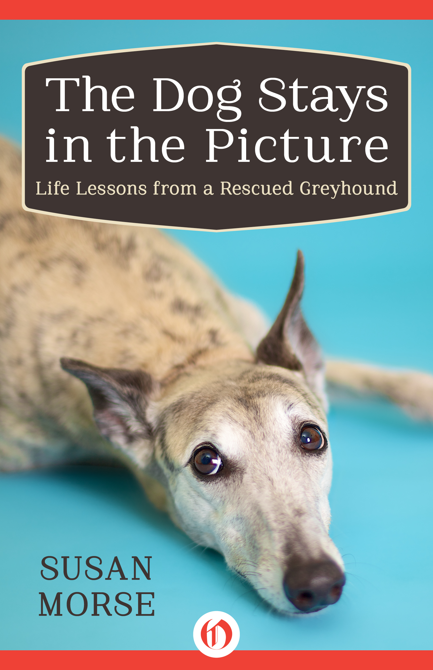 Our cover photograph of Lilly for ' The Dog Stays in the Picture'  by Susan Morse