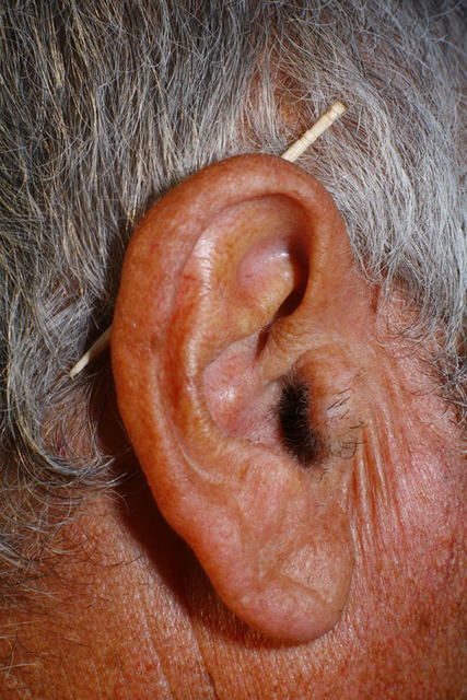 """""""Ear"""" from the series Paloma al aire, 2011"""