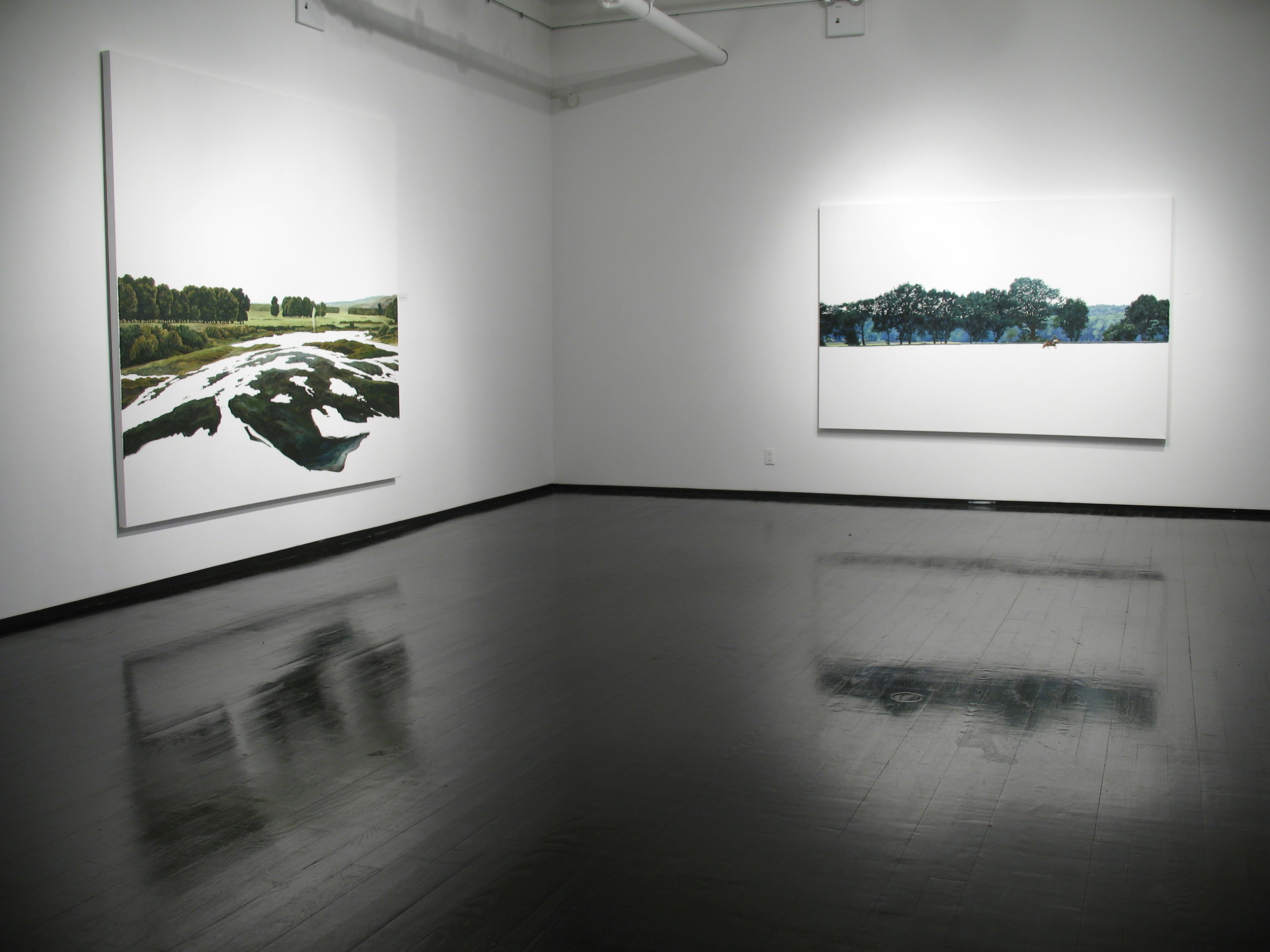 """Silke Schoener"" at Dillon Gallery, 2012"