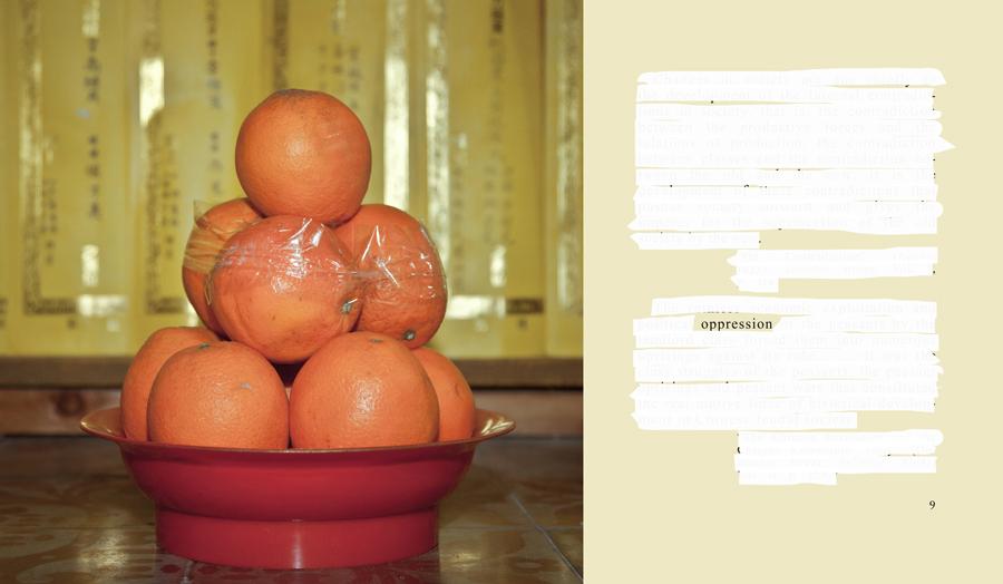 02-OPPRESSIONbsmall copy.jpg