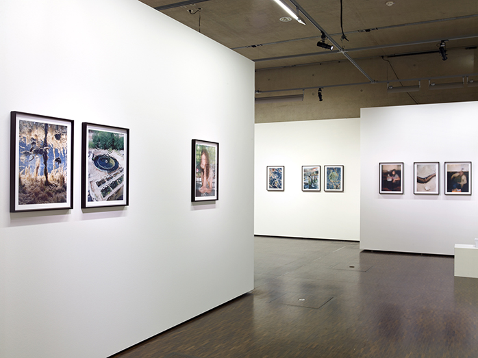 from the series Coexistence at Centre National de l'audiovisuel (2013)