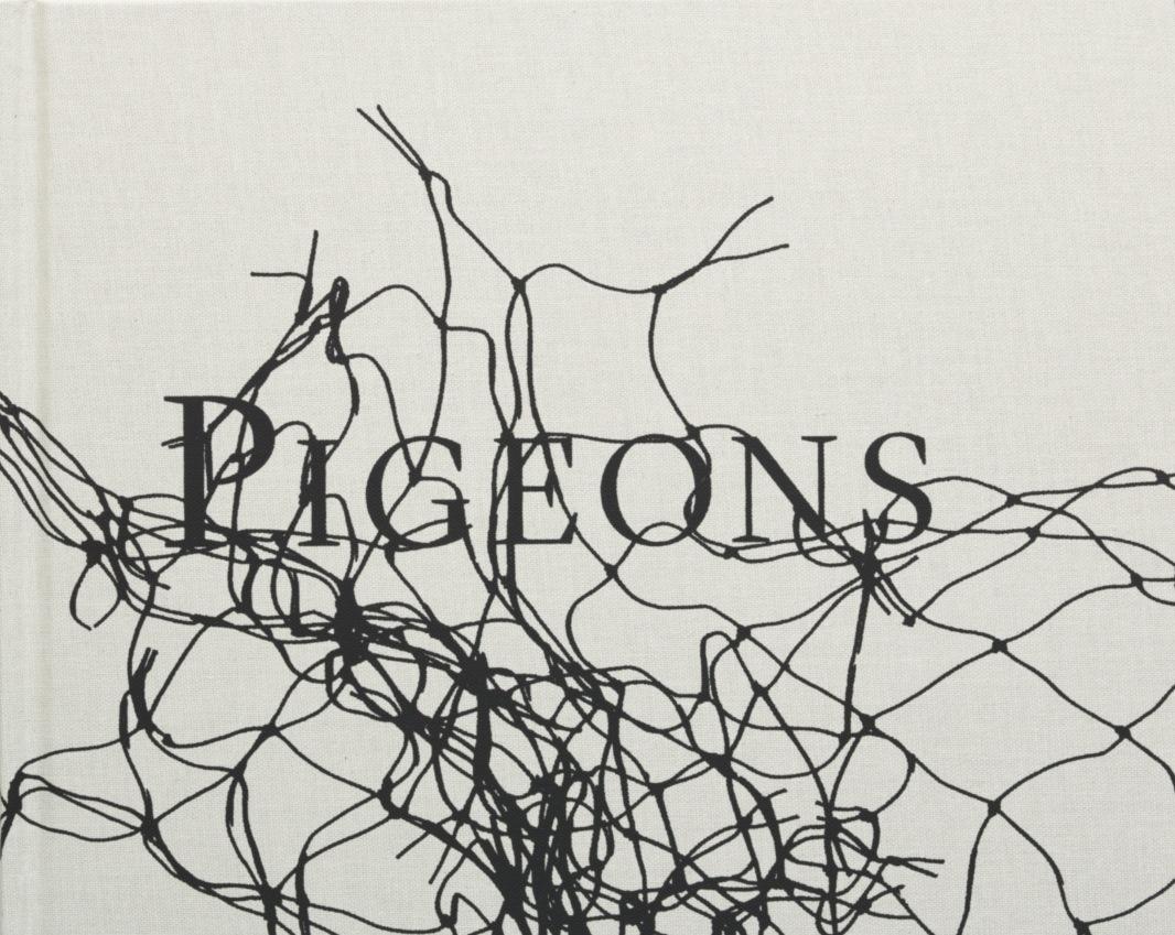Stephen_Gill_Pigeons_Book.jpg