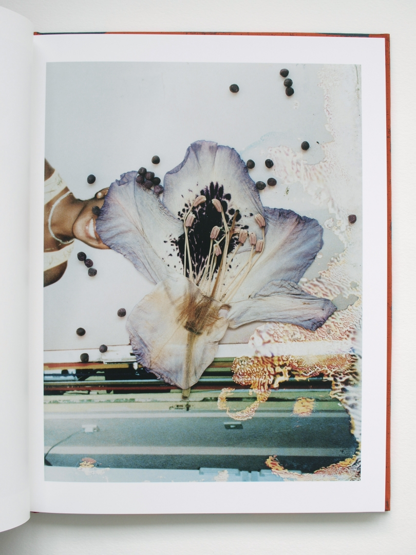 Stephen_Gill_Hackney_Flowers_Book_2.jpg