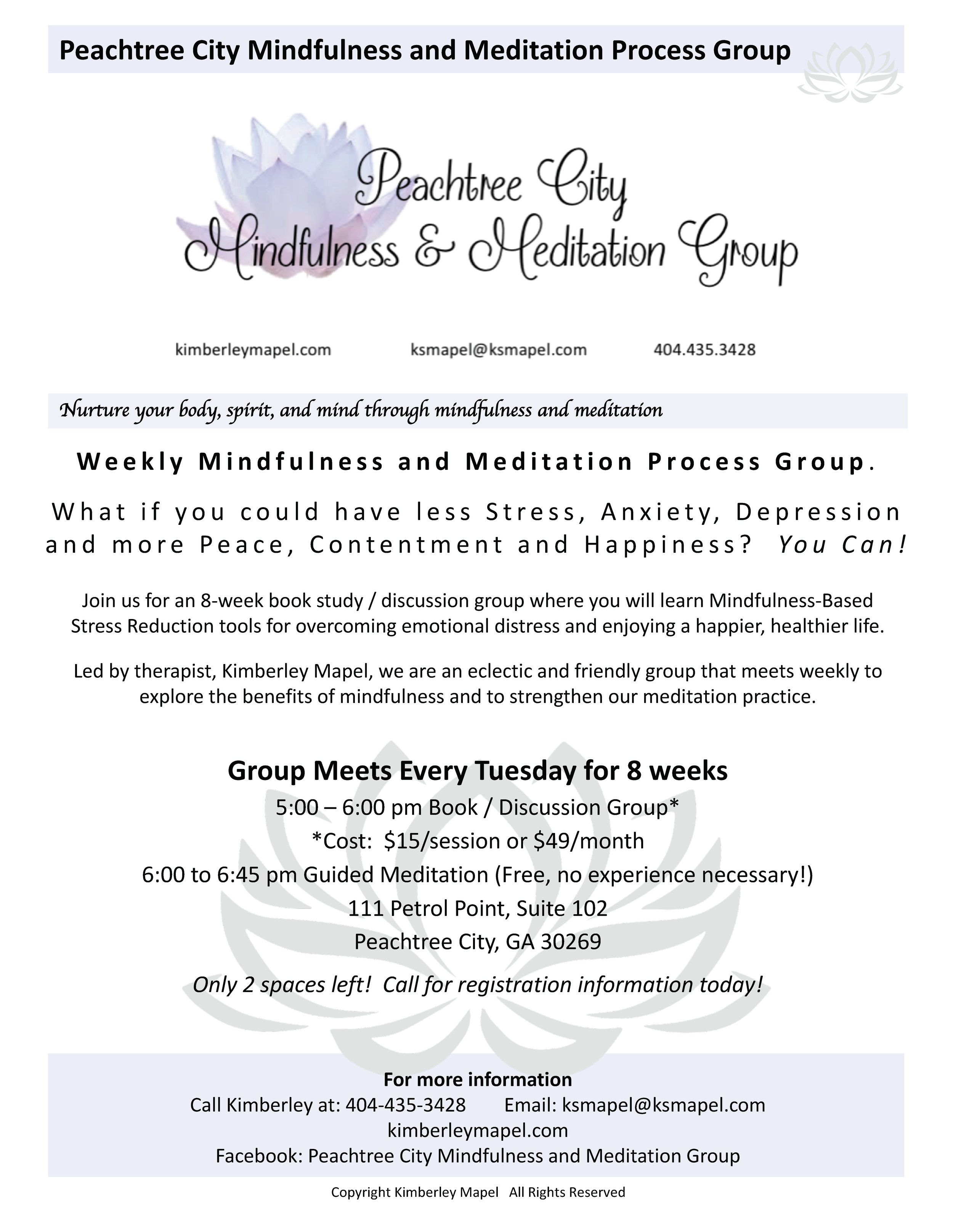 MM Process Group Flyer 1-29-2017.png
