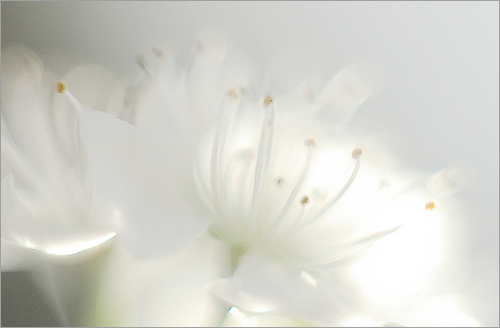 meditation 25.jpg