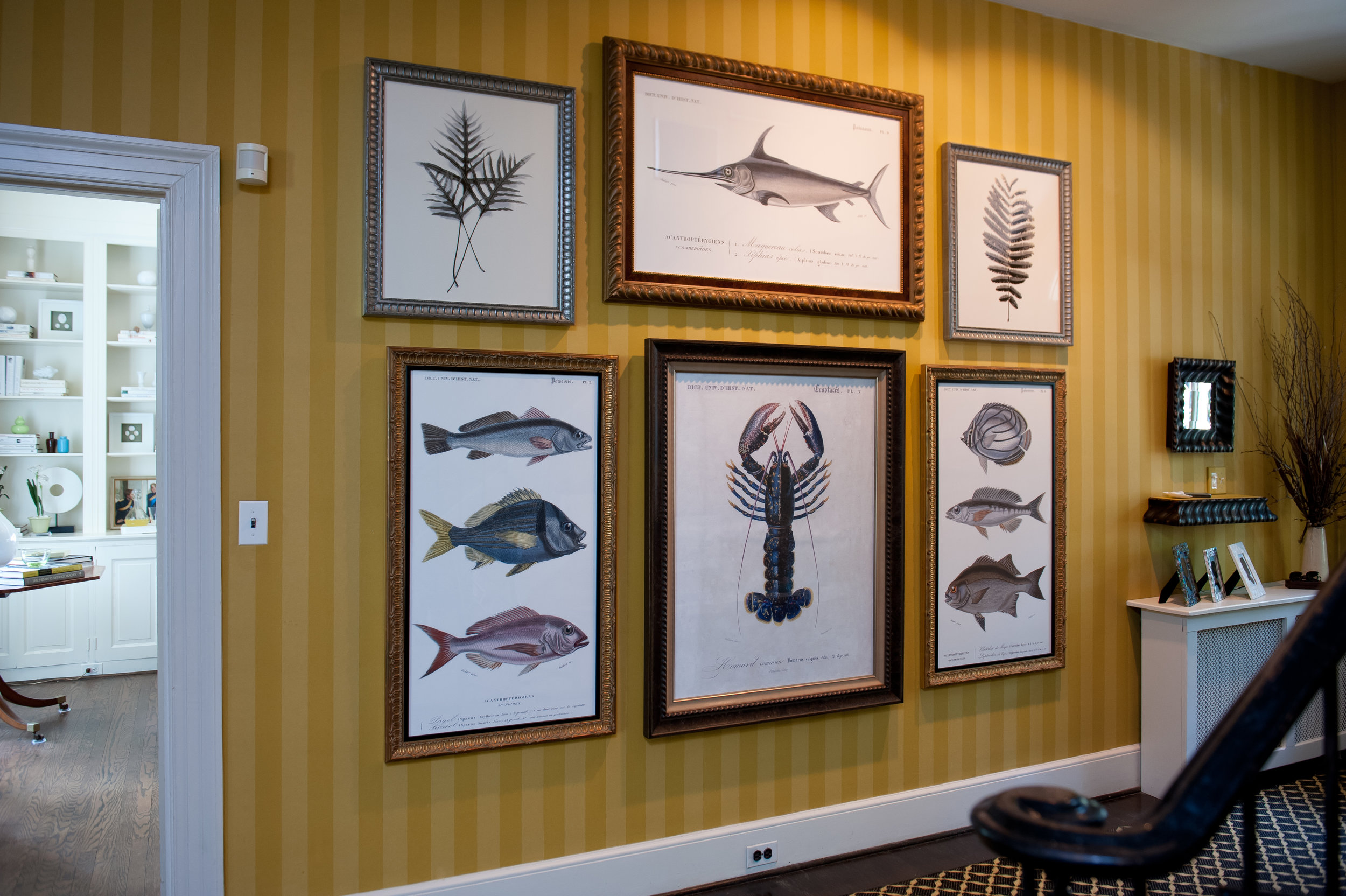 adventures on land & sea - As a house tour participant, PALLADIOwas asked to decorate this unusualhallway in an old Chestnut Hill house.With stylized art production & custom framing, PALLADIO paid tribute to bothlife under the sea and on terra firma.