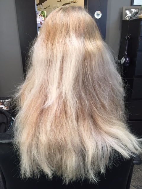 before olaplex